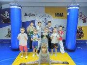 Секция Taekwondo